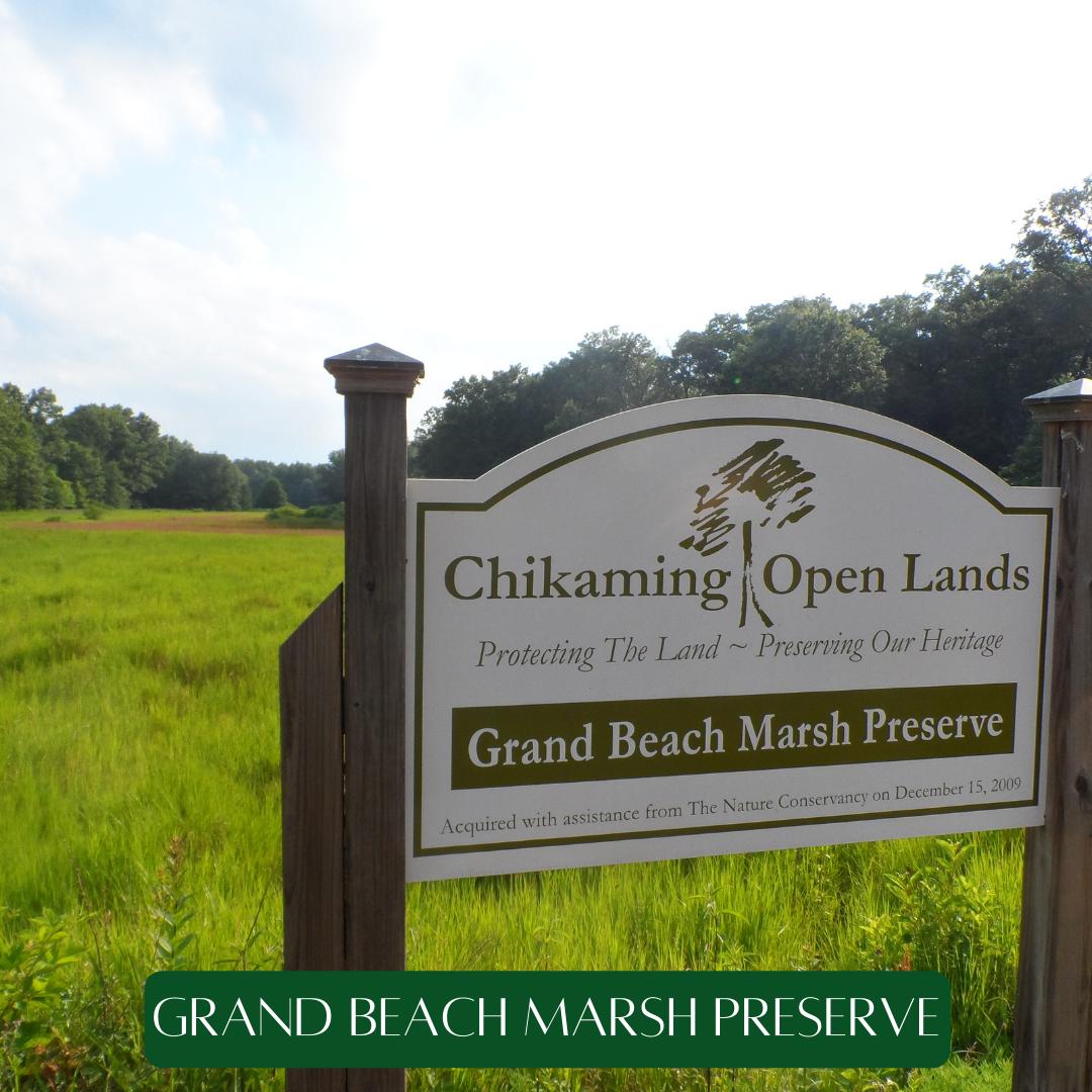 Grand Beach Marsh Preserve