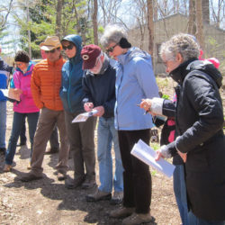 2014 Spring Wildflower Walk